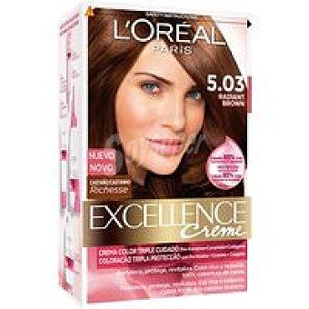 Excellence L'Oréal Paris Tinte castaño radiante N.5.03 Caja 1 unid