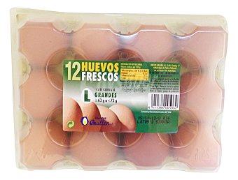 Guillen Huevo grande L 12 u