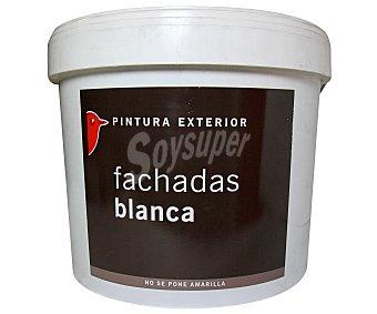 Auchan Pintura Especial para Fachadas, Color Blanco y Acabado Mate 15 Litros