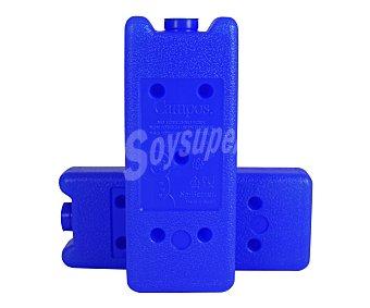 Campos Pack de 2 acumuladores de frio, lígeros y fáciles de transportar, modelo T200 1 Unidad