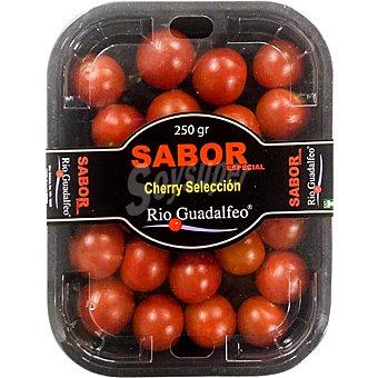 Tomate cherry Tarrina 250 g