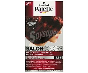 Palette Schwarzkopf Tinte Castaño Rojizo Nº 4.88 Salon Colors 1 Unidad