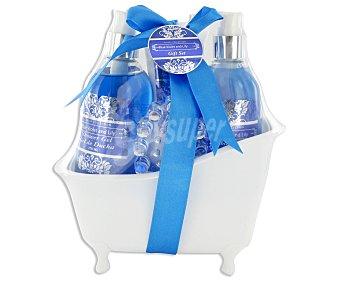 LOTE BELLEZA Bañera de Violetas Azules y Lilas 1u