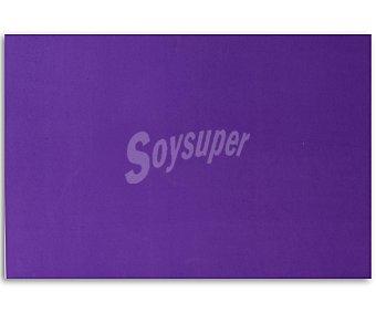APLI Plancha de foam, goma eva de color lila y dimensiones 400x600x 2 milímetros 1 unidad