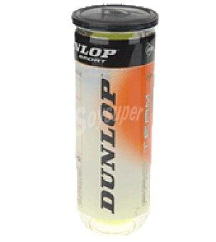 Dunlop 3PELOTAS tenis dunlop pro team