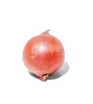 Cebolla roja Bolsa de 1000.0 g.