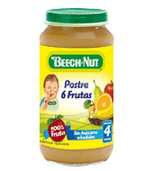 Beech-Nut Tarrito postre de 6 frutas 250 g