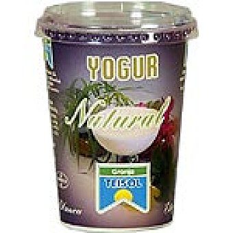 Teisol Yogur natural Bote 500 g