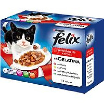 Felix Purina Gelatina estandar de carne Pack 12x100 g