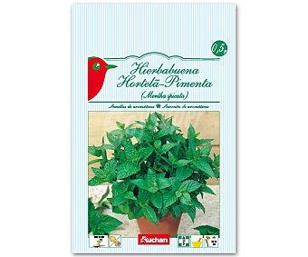 Auchan Semillas para plantar Hierbabuena 0.5 Gramos