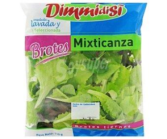 DIQUESÍ Mezcla de brotes de batavia verde y roja, rúcula, canónigos y espinaca baby, bolsa 100 gramos