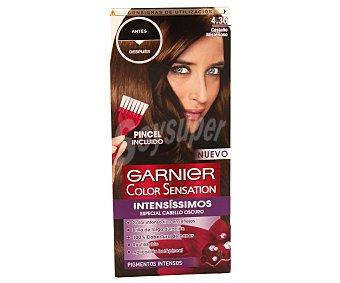Color Sensation Garnier Tinte castaño misterioso Nº 4.30 1 unidad
