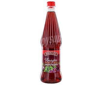Borges Vinagre de vino tinto del Penedés Botella de 75 centilitros