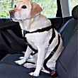 Arnés para cinturón de coche para perros talla M diámetro pecho 50-70 cm 1 unidad 1 unidad Bricar