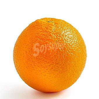Naranja de zumo al peso (peso aproximado de la ) Unidad 200 g