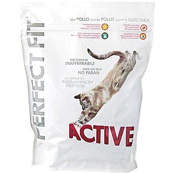 PERFECT FIT In-Home Para gatos activos rico en pollo y salmón bolsa 750 g Bolsa 750 g