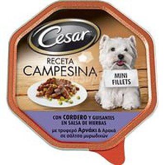 Cesar Cordero en salsa Mediterránea Tarrina 150 g