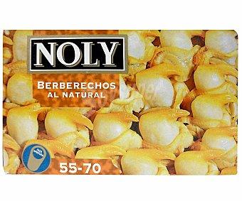 Noly Berberechos 55/70 Piezas 62 Gramos