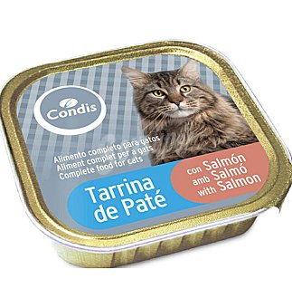 Condis Tarrina gato P. salmon 100 GRS
