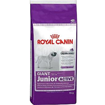 Royal Canin Producto especial para perros giant en la segunda fase de crecimiento Giant Adult Active Bolsa 15 kg