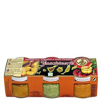 Guachinerfe Mojo almogrote, cilantro y rojo picante pack de 3 tarrros de 120 G 3 x 120 ml