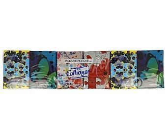 Colhogar Pañuelo de bolsillo con diseños  Paquete 12 uds