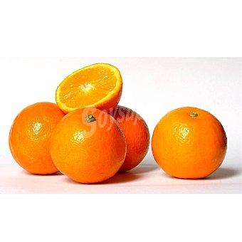 Naranja a granel 1 Kg aprox Bandeja de 1000.0 g. aprox