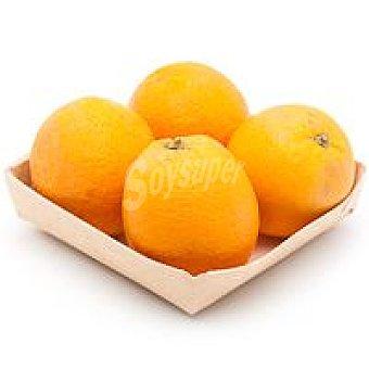 Naranja ecológica Bandeja 800 g