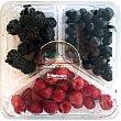 Mix de frutas con moras, arándanos y frambuesas Tarrina de 300 g Fragolina