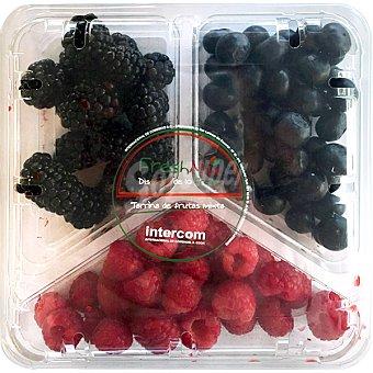 FRAGOLINA Mix de frutas con moras, arándanos y frambuesas Tarrina de 300 g