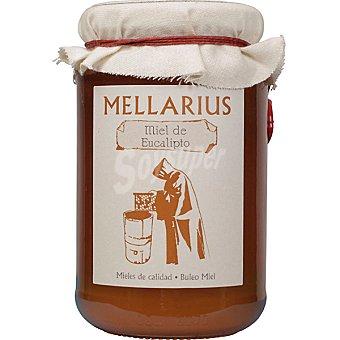 MELLARIUS Miel de eucalipto Tarro 500 g