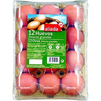 Aliada huevos clase L estuche 12 unidades