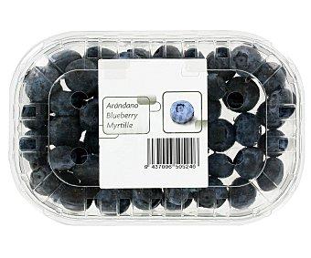 Carrefour Arándanos Tarrina de 125 g