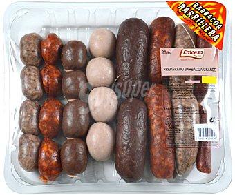 Emcesa Bandeja con preparado para barbacoa grande (6 personas), elaborado sin gluten 450 gramos aproximados