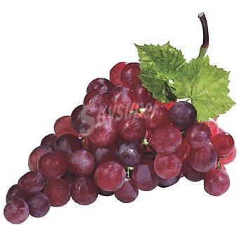 Uva rosada sin semilla selección al peso