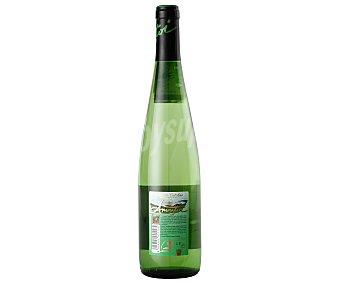 Ameztoi Vino Blanco Txakoli Botella de 75 Centilitros