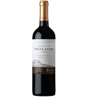 Castillo de Molina Vino de Chile tinto carbenet sauvignon 75 cl