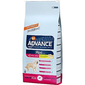 Advance Affinity Alimento de alta gama para perros de raza grande de + 6 años con pollo y arroz Maxi Senior Bolsa 15 kg