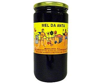 Anta Miel Multifloral de Anta Tarro de 1000 Gramos