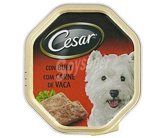 Cesar Comida Húmeda para Perros Paté de Buey 150 Gramos