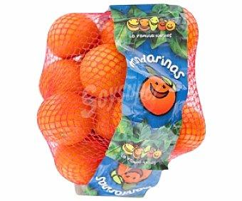 FRUTA Mandarina de zumo malla 2 kilogramos