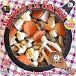 Directo a la sartén setas de cultivo con zanahoria y coliflor bol 350 g 350 g Frutobos