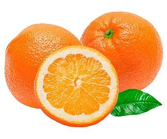 FRUTA Naranjas Malla 2 Kilogramos