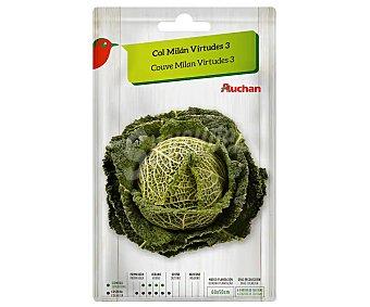 Producto Alcampo Sobre de semillas para sembrar col de la variedad Milán virtudes 3 alcampo
