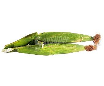 HORTALIZA Piña de Maíz 1 Unidad