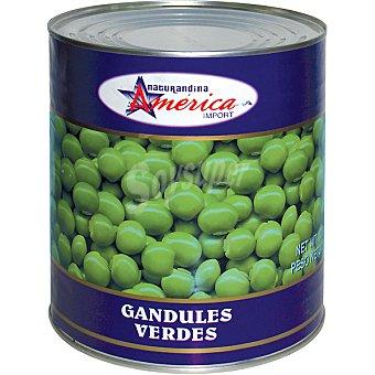 AMERICA IMPORT Gandules Lata 425 g