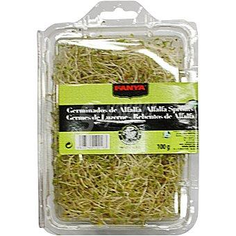 Fanya Brotes de alfalfa Tarrina 100 g