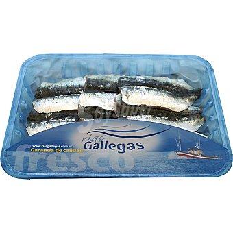 Rías Gallegas Filetes de sardina Bandeja 300 g