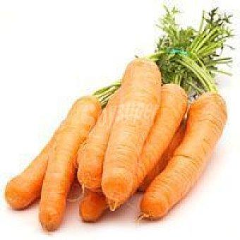 Zanahoria con hoja del País Vasco manojo