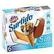 Surtido de helados sin azúcares añadidos 6 ud 6 ud Casty